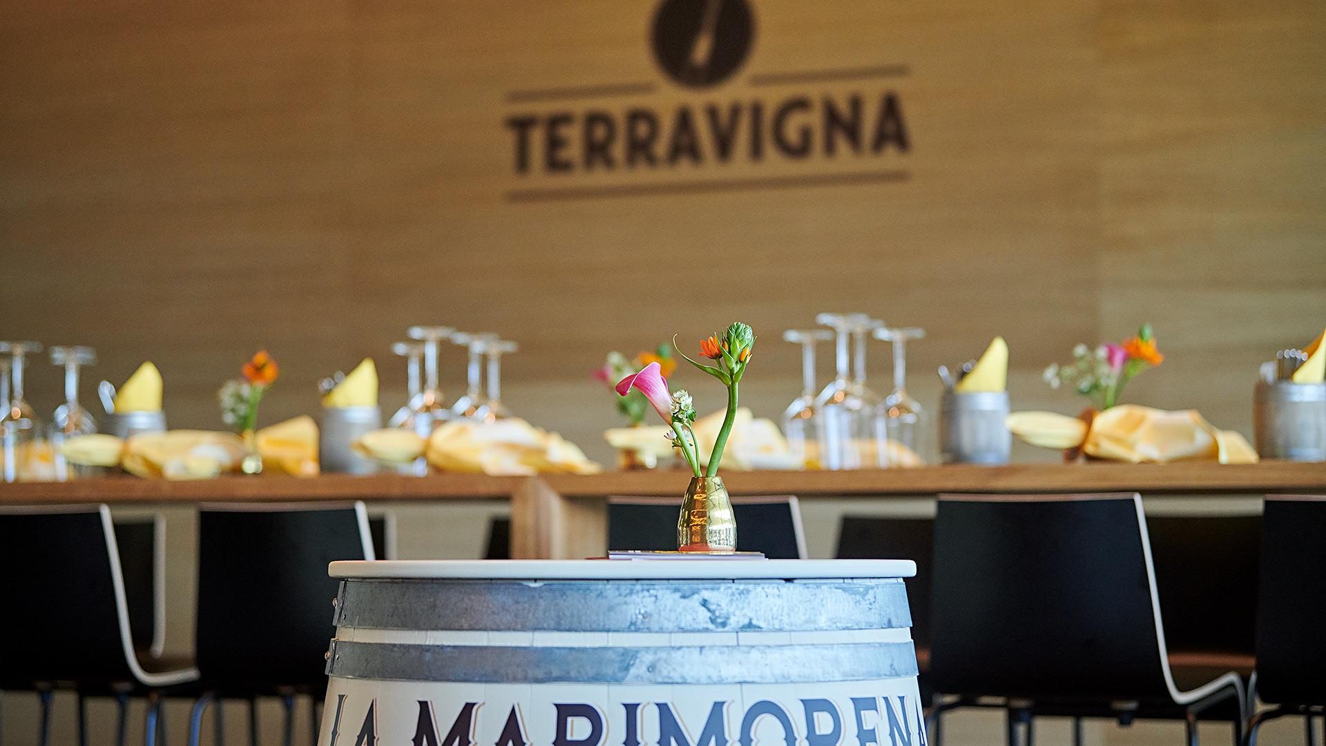 portfolio_terravigna_3